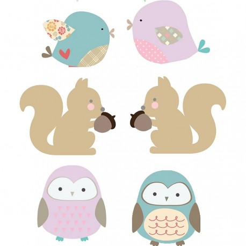 Owls, Birds, Squirrels